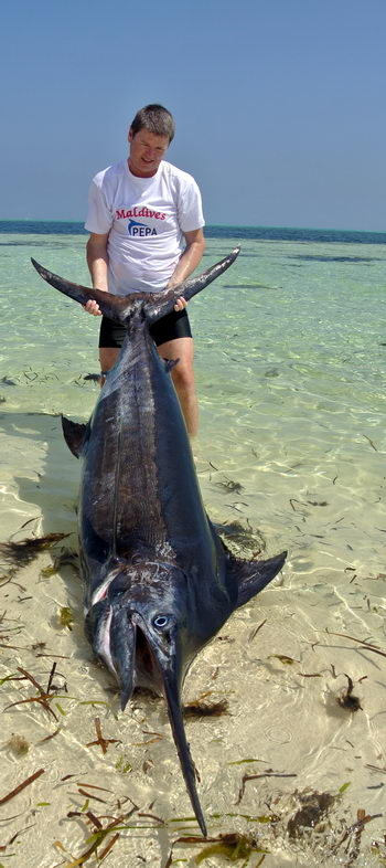 Marlin orgie